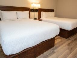 Lodging & Accommodations