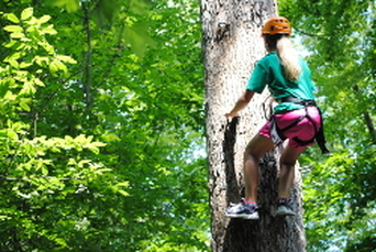 Tree climbing at the outdoor challenge course in Williamsburg, VA